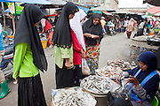 """Sept. 26, 2009 -- YALA, THAILAND: Muslim women buy fish in the market in Yala, Thailand. Thailand's three southern most provinces; Yala, Pattani and Narathiwat are often called """"restive"""" and a decades long Muslim insurgency has gained traction recently. Nearly 4,000 people have been killed since 2004. The three southern provinces are under emergency control and there are more than 60,000 Thai military, police and paramilitary militia forces trying to keep the peace battling insurgents who favor car bombs and assassination.  Photo by Jack Kurtz"""