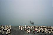 Yangtze river(chang jiang) 2007