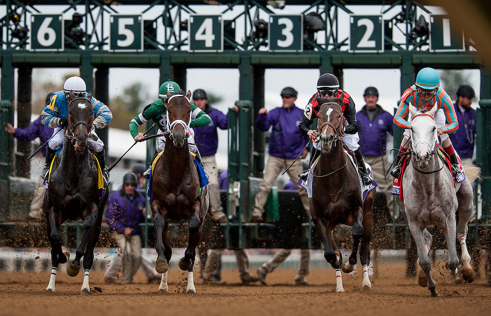 October 31, 2015:  Horses break from the starting gate in the Breeders' Cup Juvenile at Keeneland Race Track in Lexington, Kentucky. Evers/ESW/CSM