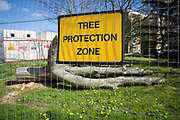 A yellow sign for a Tree Protection Zone, fenced off from the public with a recently felled tree inside. Norwich, Norfolk. United Kingdom<br /> (photo by Andrew Aitchison / In pictures via Getty Images)