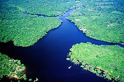 Floresta Amazonica - Rio Negro/ Rain Forest - Black River.
