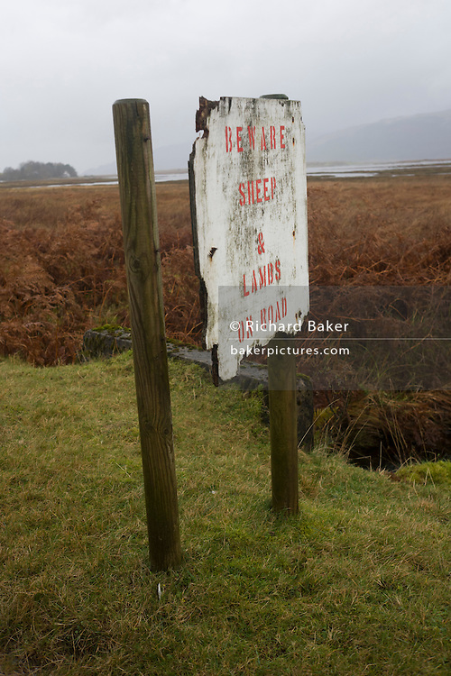 Drivers' warning of sheep and lambs, Pennyghael, Isle of Mull, Scotland.