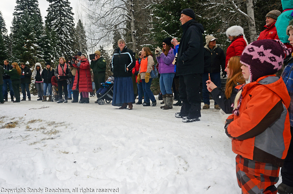 """The small rural community of Yaak Montana gathers to watch the Yaak K-8 grade school sing """"This Land is Your Land"""" during the presentation for the cutting of the Capitol Christmas tree at the Historic Upper Ford Ranger Station. Kootenai National Forest in the Purcell Mountains, northwest Montana."""