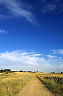 A lonely track in the Spanish village of Morales del Vino, Zamora province, on July 22, 2001. Photo Rafa RIVAS