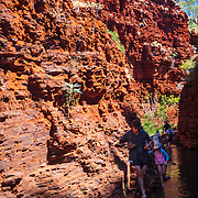 A family makes it way through the first water obstacle in Weano Gorge, Karajini National Park, Western Australia, Australia