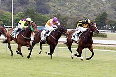 Upper Hutt-Racing, New Zealand Bloodstock Guineas, October 27