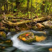 Fall Foliage, Waterfalls and Nature's Beauty