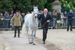 Nicolai Craig, (NZL), Just Ironic<br /> First Horse Inspection - Mitsubishi Motors Badminton Horse Trials <br /> Badminton 2015