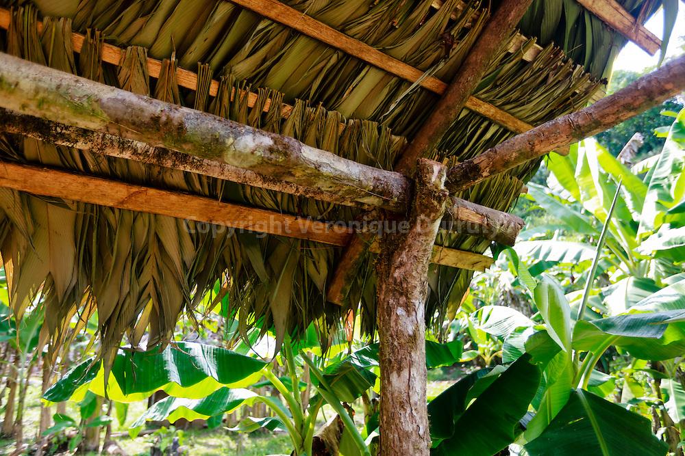 detail of a traditiona roof, Guaymi native reserve, Osa Peninsula, Costa Rica // Detail de toit traditionnel, Reserve indigene Guaymi, Peninsule de Osa, Costa Rica