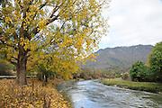Georgia, The Kura (Mtkvari) river fall colours