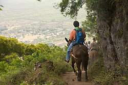 Hawaii: Molokai, the Mule Ride from the cliff tops down 1,600 feet to the leper colony at Kalaupapa. Model released..Photo himolo132-71824.Photo copyright Lee Foster, www.fostertravel.com, lee@fostertravel.com, 510-549-2202