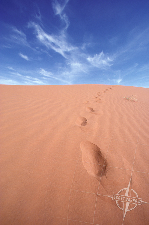 Wind sculpted sand dune horizon with blue sky and foot prints.