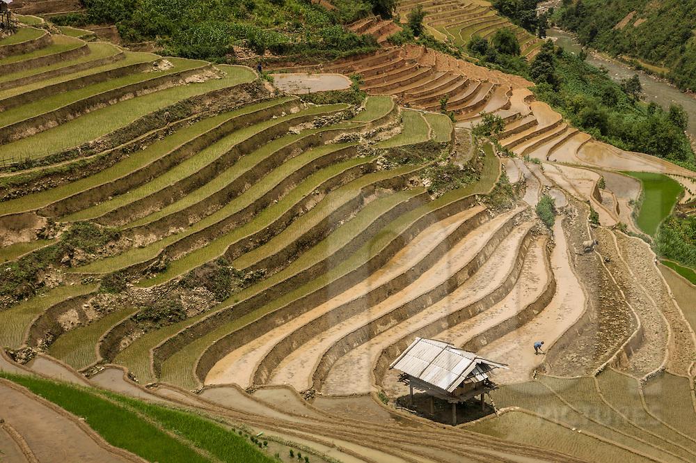 Hidden valley of La Pan Tan Village, Mu Cang Chai District, Yen Bai Province, Vietnam, Southeast Asia