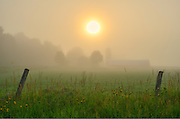 farm at sunrise in fog <br /> Bourget<br /> Ontario<br /> Canada
