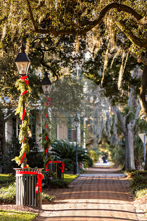 Christmas decorations in Whitfield Square Savannah, GA.