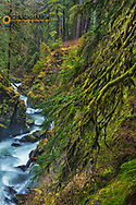 Sol Duc River in Olympic National Park, Washington, USA