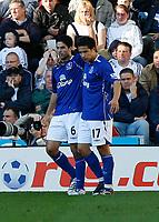 Photo: Steve Bond.<br />Derby County v Everton. The FA Barclays Premiership. 28/10/2007. Mikel Arteta (L) celebrates