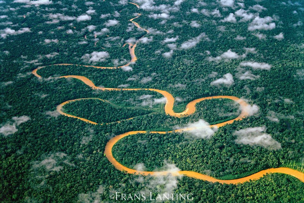 Meandering river (aerial), Manu National Park, Peru