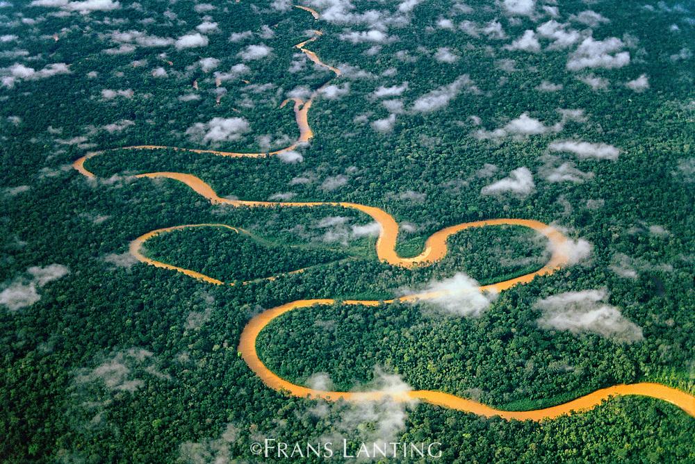 Meandering river, Manu National Park, Peru