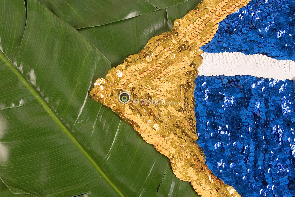 Bandeira do Brasil estilizada, feita com folhas de bananeira e lantejoulas./ Stylized Brazil flag, made with banana leaves and sequins. Ano 2005.Foto Adri Felde/Argosfoto
