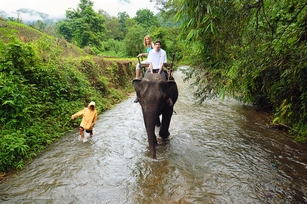 Tourist ride an elephant, Kanchanaburi Province, Thailand