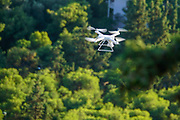 Drone flying on a lush green tree foliage background