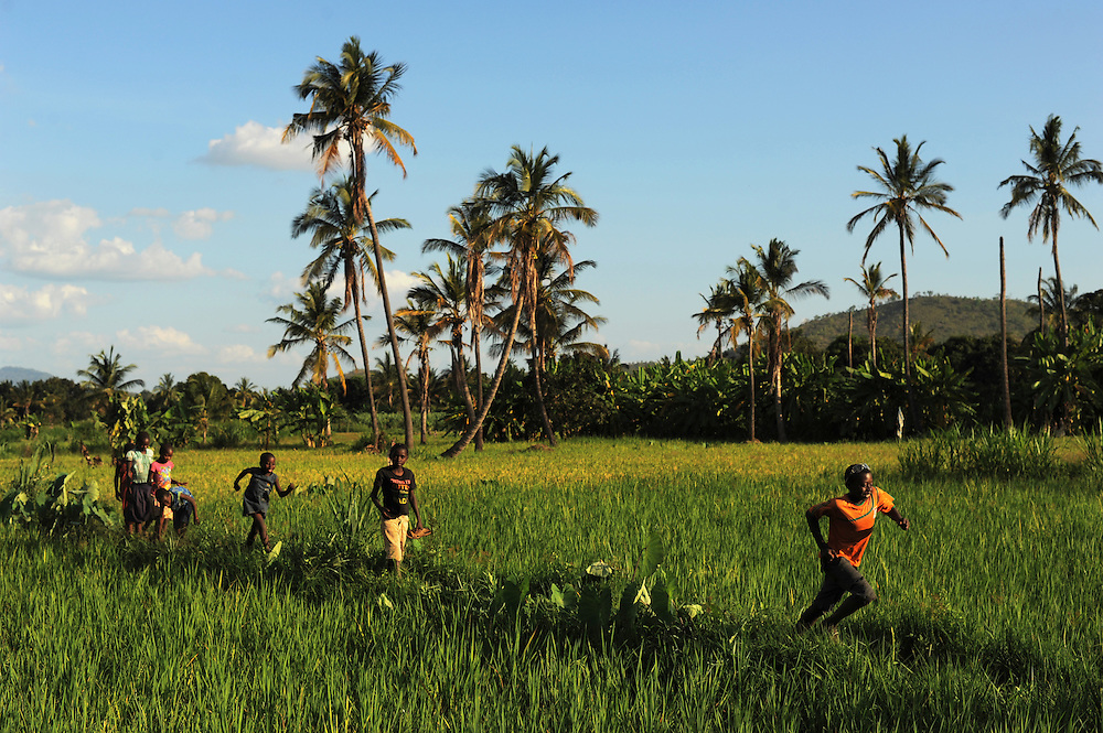 "KIROKA, TANZANIA -  13-11-01  -  Children run through rice fields in Kiroka on November 1. An FAO project to strengthen capacity of farms for climate change is underway in Kiroka, Tanzania. ""It's something we may call climate-smart agriculture,"" says mission project co-ordinator Prof. Henry Mahoo, who teaches at the Sokoine University of Agriculture. The project aims to improve land and water management, promote climate resilient agriculture and encourage dialogue and understanding regarding climate change adaptation practices.   Photo by Daniel Hayduk"