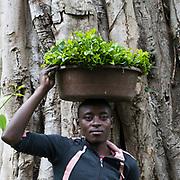 Ruigo, Uganda, Africa