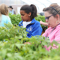 Lauren Wood | Buy at photos.djournal.com<br /> Agriculture teacher Kelly Ginn, right, helps student Allison Floyd prune the plants in the greenhouse Wednesday afternoon at Pontotoc Middle School.