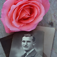 Vintage black and white photo of man in World War 2 air force uniform lying with pink Rose or Rosa Lovely Lady