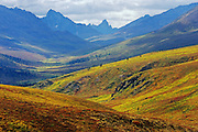 Autumn in Tombstone Range (Ogilvie Mountains)<br />