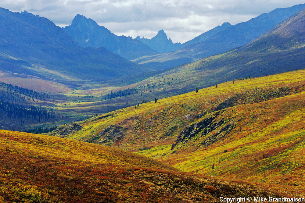 Autumn in Tombstone Range (Ogilvie Mountains)<br /> Dempster Highway<br /> Yukon<br /> Canada
