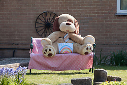 Coronavirus lockdown, Dorset UK April 2020.  Rainbow NHS painting pinned to giant soft toy outside house.  People are putting teddy bears in their front windows to make children's daily walk more fun - 'we're going on a bear hunt'!