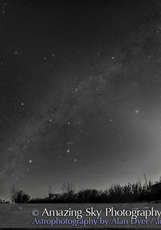 A horizon-to-zenith panorama of the winter consellations on a March evening as they set into the southwest. Orion is at bottom centre, with his Belt pointing down to Canis Major and up to Taurus. Gemini and Auriga are at top, in this case near the zenith overhead. The bright star clusters, M44, the Beehive, (at left) and M45, the Pleiades, (at right) flank the Milky Way. M45 is embedded in the Zodiacal Light. The star clusters M35 in Gemini and M41 in Canis Major are also visible as diffuse spots, as are several other star clusters. A couple of satellite trails are visible. <br /> <br /> Taken from home Match 19, 2017, for use as a book illustration. This is a panorama of 5 panels, each with the 20mm Sigma Art lens at f/2, and Nikon D750 at ISO 3200, for 25 seconds each. Stitched with Adobe Camera Raw. This version of the image has been processed to make the view better resemble what you see with the unaided eye, in a largely monochrome and softer view than the colourful and high-contrast views commonly presented in astrophotos. Even at that there is more fine structure present in the Milky Way than the unaided eye usually sees, though binoculars beging to reveal that smaller detail. I have left some colours in some stars and in the foreground of landscape scenes.