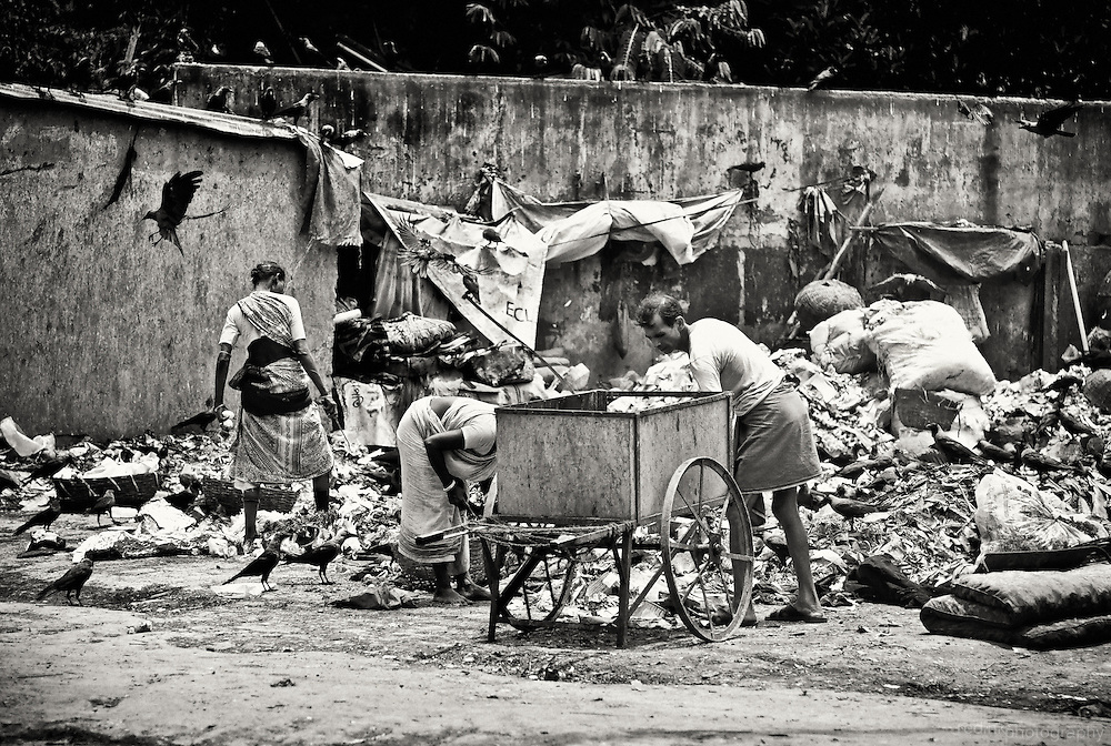 Two men and a women dig through road side trash looking for items that can be reused. Birds dig through the trash as well. Converted to black and white using Silver Efex Pro. Kolkata (Calcutta), India