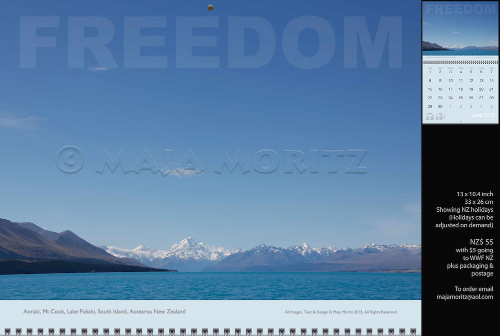 Freedom, Aoraki, Mt Cook, Lake Pukaki, South Island, Aotearoa, New Zealand