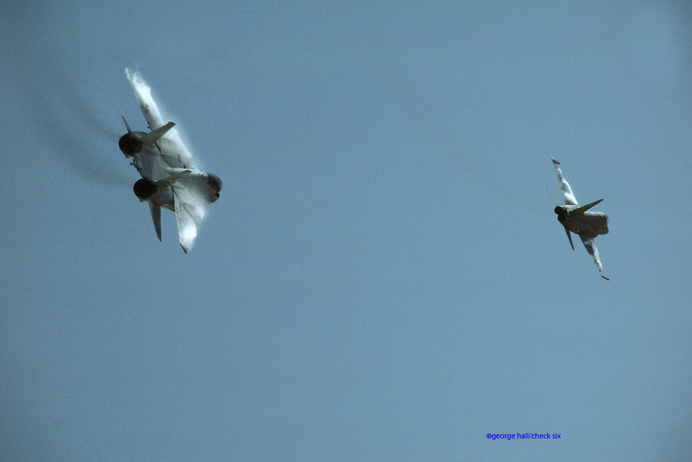 Fight's on, pal       F-14 after TOPGUN F-5