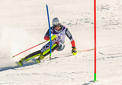 45# Taylor Laurie from Great Britan during the slalom of National Championship of Slovenia 2019, on March 24, 2019, on Krvavec, Slovenia. Photo by Urban Meglic / Sportida