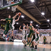 1st year guard Benjamin Hillis (8) of the Regina Cougars in action during the home game on December  3 at Centre for Kinesiology, Health and Sport. Credit: Matt Johnson/Arthur Images
