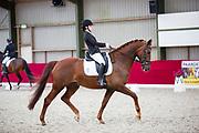 Jamie van Mensvoort - Hamilton<br /> Horsefood Dressuur Talent 2017<br /> © DigiShots - Robin Artz