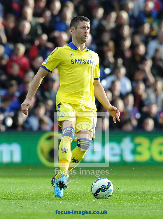 Gary Cahill of Chelsea during the Barclays Premier League match at Selhurst Park, London<br /> Picture by Alan Stanford/Focus Images Ltd +44 7915 056117<br /> 18/10/2014