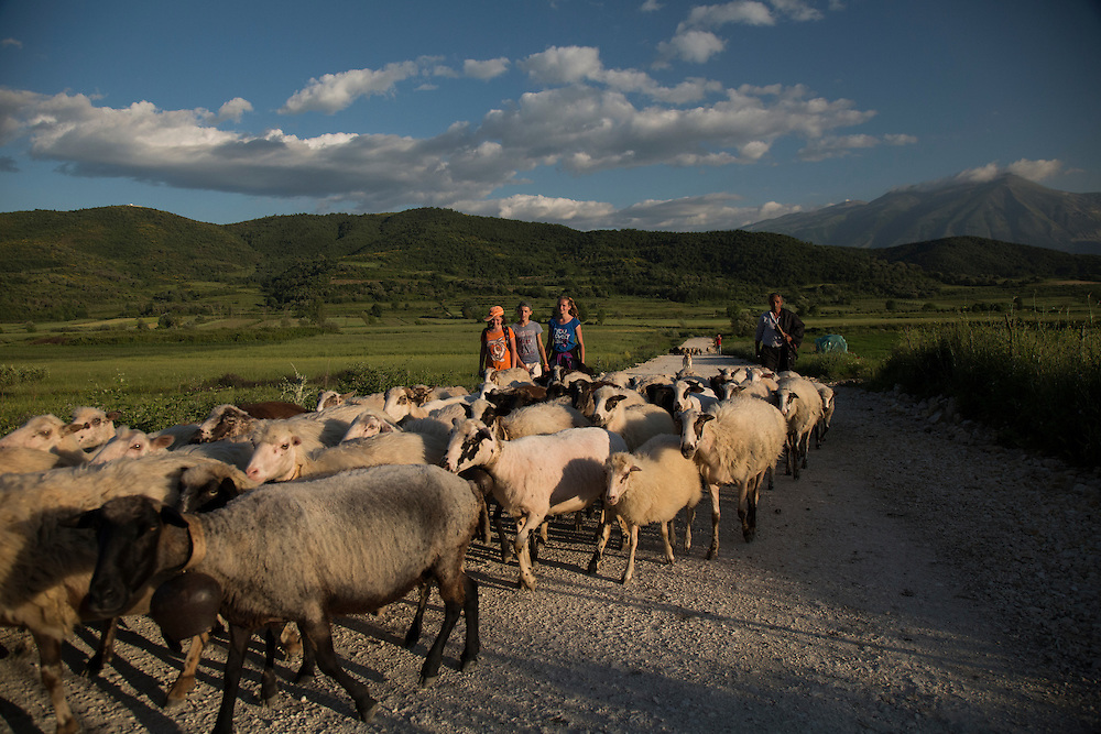 A shepherd from Kuta and his children bring home their flock of sheep through the fields that will be flooded if the Pocem dam is built on the Vjosa River.