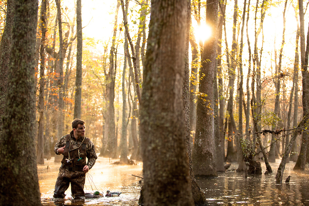 Picking up decoys in flooded timber after a duck hunt in Virginia.