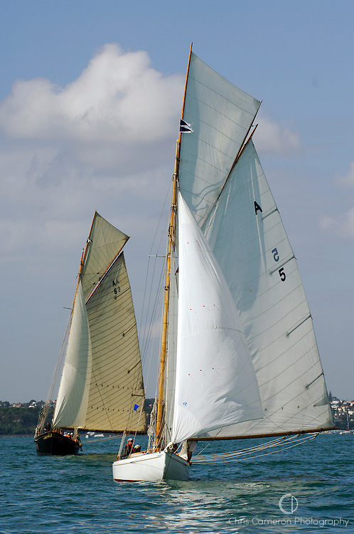 Waitangi (A6) and Rawene (A5) in the around Rangitoto race of the Lindauer Classic Yacht Regatta. 18/2/2006