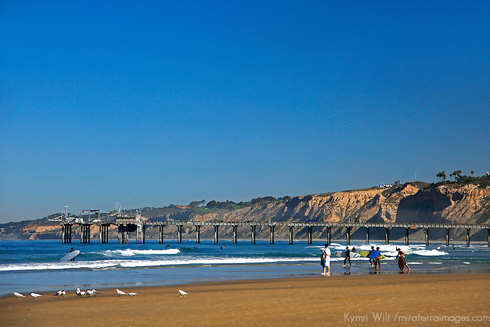 USA, California, La Jolla. La Jolla Shores Beach and Scripps Pier.