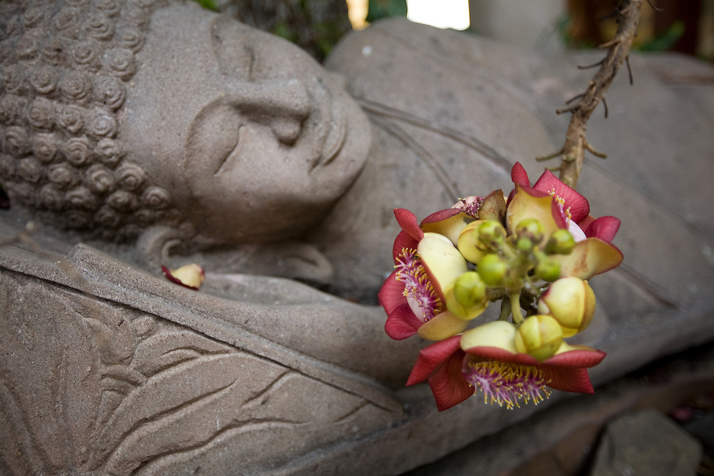 A reclining Buddha and Flower at the Royal Palace, Phnom Penh, Cambodia