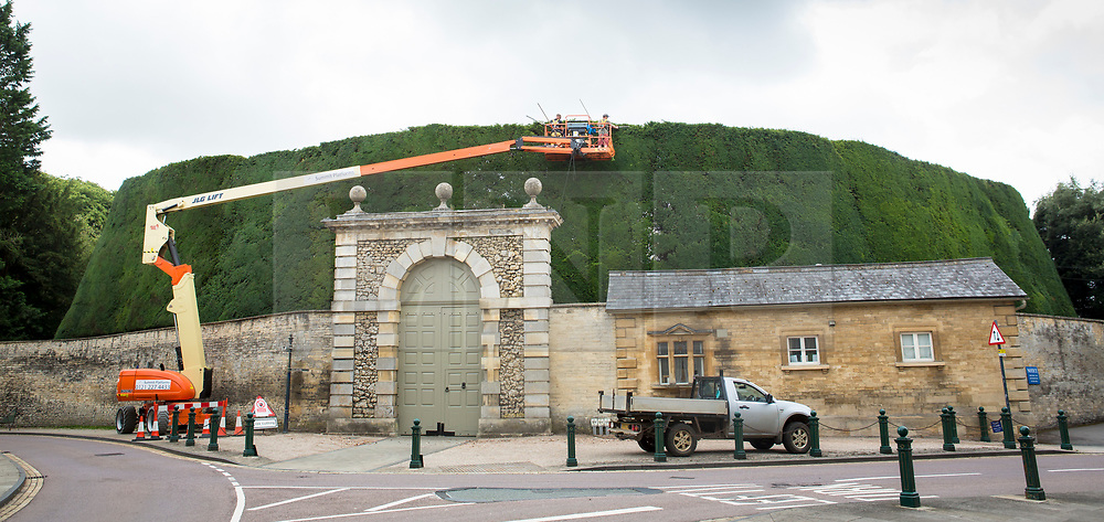 © Licensed to London News Pictures 20/08/2018, Cirenecester, UK - Workers from the Bathurst Estate, Cirencester use a cherry picker to give the estates 40ft high, 300 year old Yew hedge it's annual trim. The hedge is said to be the largest of itís kind in the world and it can take up to 2 weeks to complete the job. Photo Credit : Stephen Shepherd/LNP