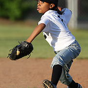 A young baseball player throws the ball during the Norwalk Little League baseball competition at Broad River Fields,  Norwalk, Connecticut. USA. Photo Tim Clayton