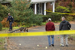 November 1, 2018 - Farmington, CT, USA - A Connecticut State Police K-9 unit investigates a stabbing at 241 Talcott Notch Road in Farmington, Conn. on Thursday morning, Nov. 1, 2018. Farmington Police received a 911 call early Thursday morning about a large fight outside the residence. The three stabbing victims were non-Farmington residents and are expected to survive. (Credit Image: © Patrick Raycraft/Hartford Courant/TNS via ZUMA Wire)
