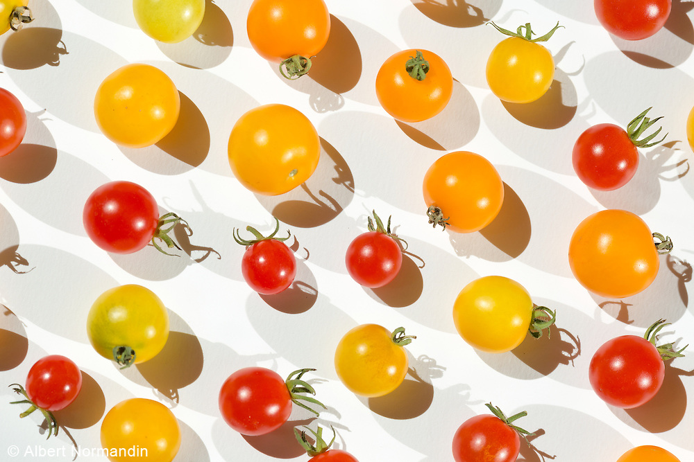 An assortment of tomatoes, red, yellow, orange